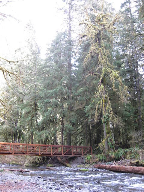 OlympicNP 0044