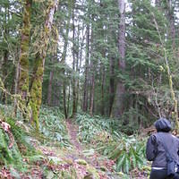 OlympicNP 0015